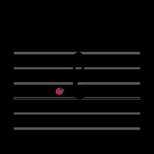 Méthode Syllabique Bobo - écriture cursive